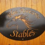 blue horizons horse riding school